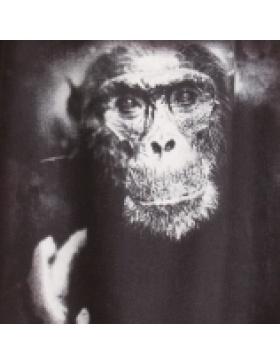 Rochie print maimuta