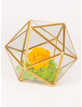 Aranjament cu trandafir criogenat  in terariu in forma de sfera