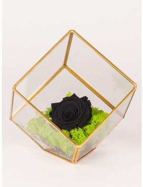 Aranjament cu trandafir conservat in terariu in forma de cub