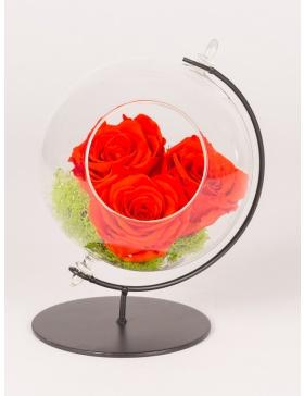 Trandafiri conservati in glob de sticla