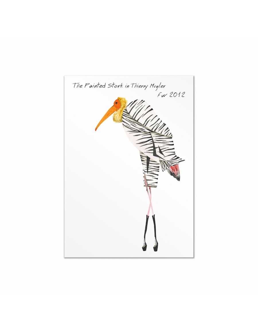 Set carti postale Fashion Birds  #8