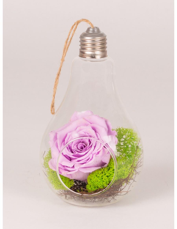 Bec de sticla cu trandafir conservat