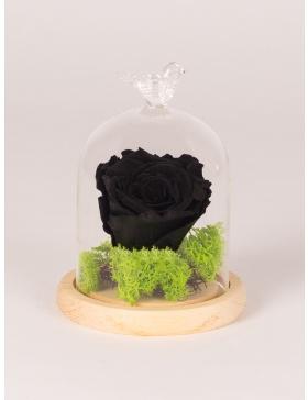 Trandafir conservat in clopot mic de sticla
