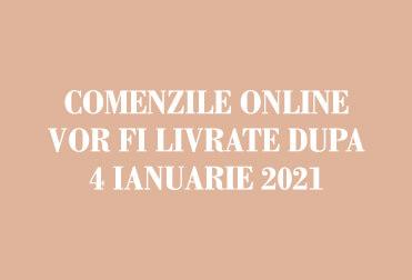 Comenzi Online