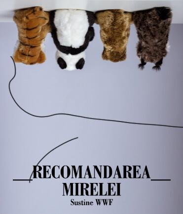 Campania WWF